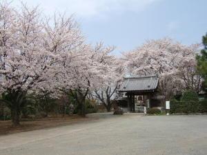 2007長福寺