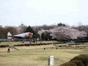 航空公園4